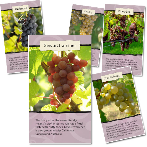 Proposed Wine Tasting Collector Cards